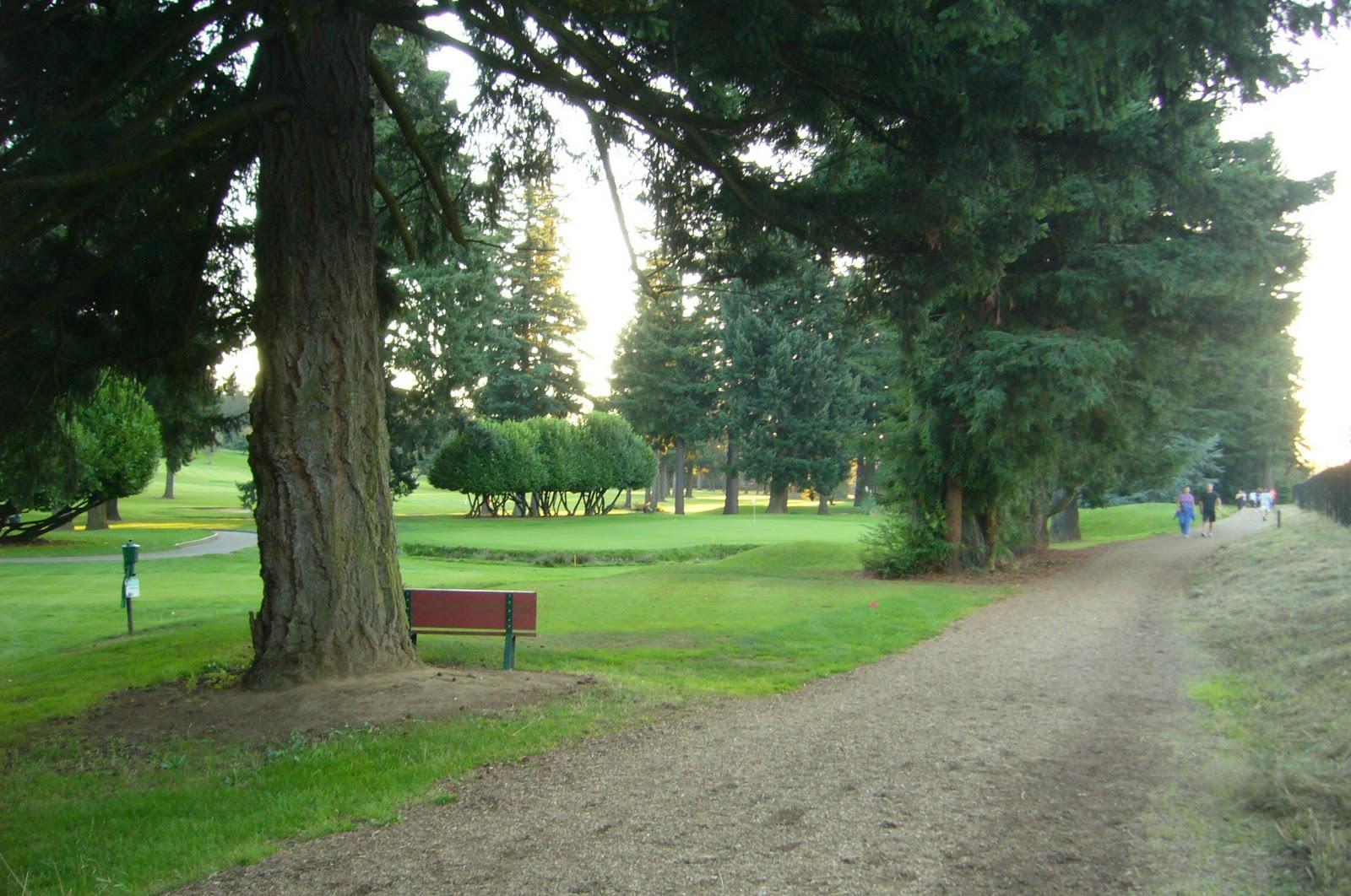 Backyard Golf Course Design