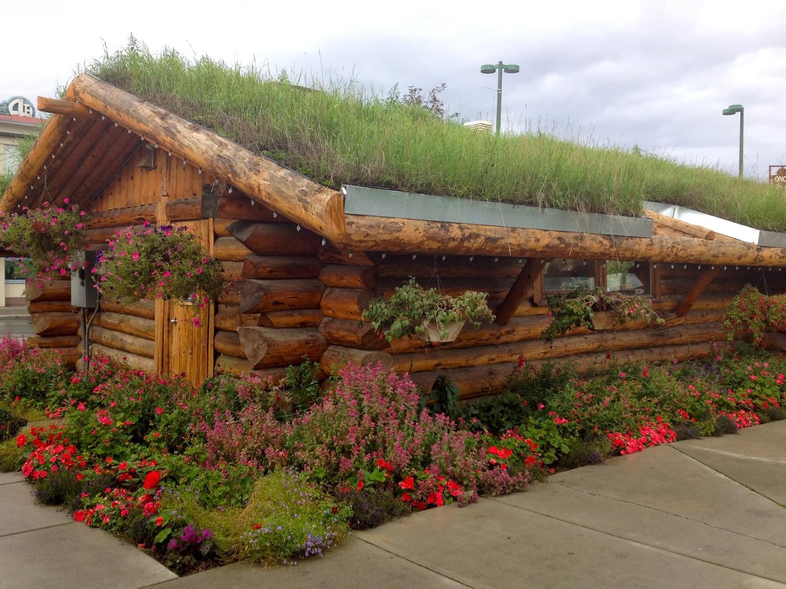 The Alaskan Honeymoon: Part One (Anchorage, AK) – Amateur Bot-ann-ist